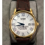 Citizen EcoDrive Brown Leather Numeral Watch