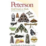 PETERSON FIELD GUIDE TO MOTHS OF NORHEASTERN NORTH AMERICA