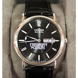 Citizen EcoDrive Black Leather Watch